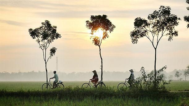 bicycle-riding-947336_1920_800x450.jpg