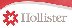 Hollister Logo.jpg