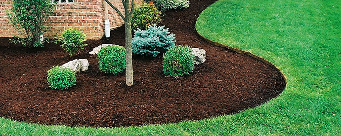 Let our trained professionals evaluate your current property to give recommendations on the best time and size for your bushes to be trimmed