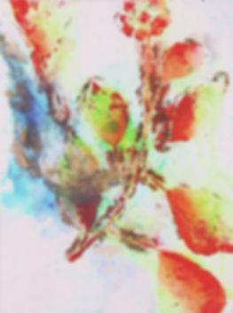 akira inumaru botaniqueA7213_edited_edit