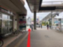IMG_6536(1) t.jpg