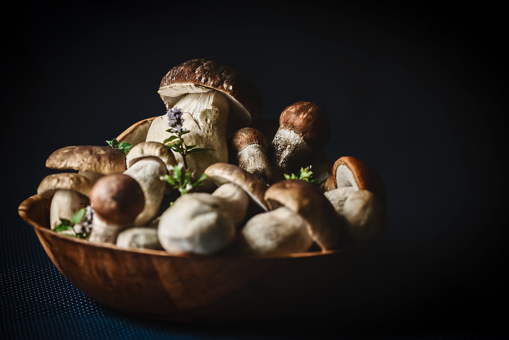 Bowl of Mushrooms photo by Peter Oslanec