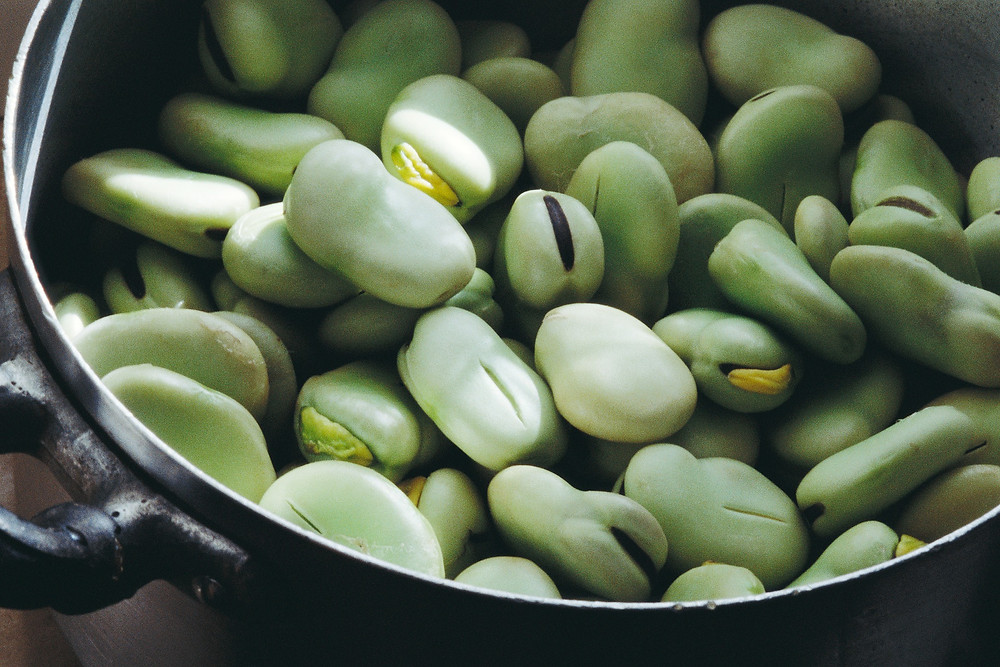 Bowl of Lima Beans