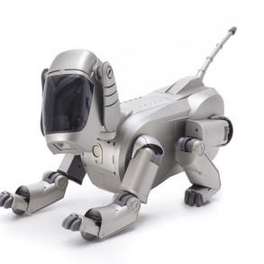 アンドロイドは電気犬の夢を見るか