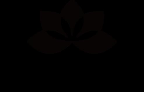 nirvana logo data.png