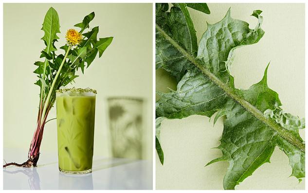 iced matcha & dandelion tea latte