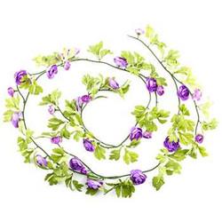 Lavender Ranunculus