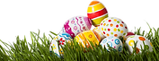 Grass-Easter-Egg-PNG-Photo.png