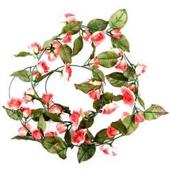 Coral Mini Rose