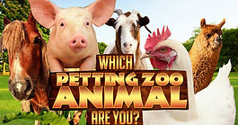 Petting Zoo, mobile Petting Zoo, Petting Zoo Rentals