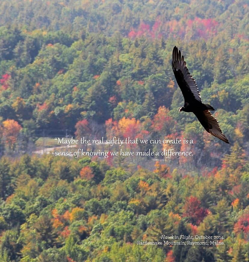 Hawk in Flight (copyright D.L. Dunton Photography)