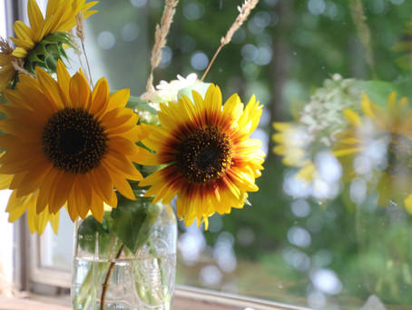 Sunflowers and Crickets