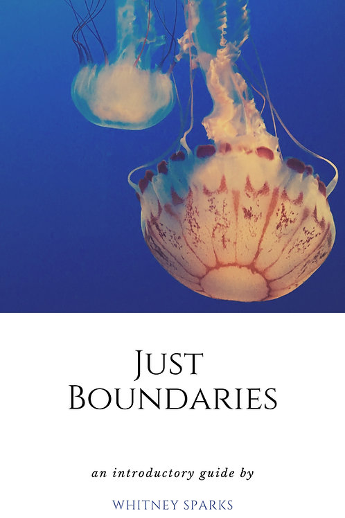 Just Boundaries (eBook)