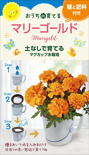 Magcup_flwer_Marigold_dennouassist.jpg