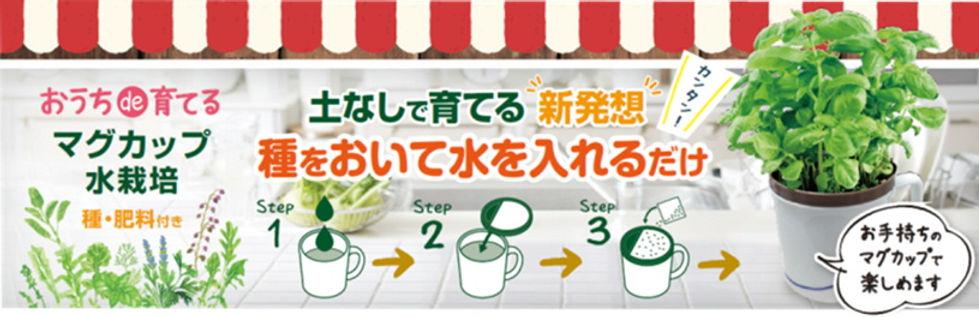 ハーブ野菜_マグカップ_top.jpg