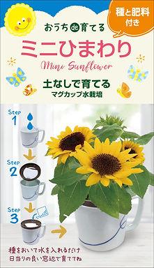 おうちde育てるシリーズ「マグカップ水栽培・花シリーズ」の取り扱いをはじめました