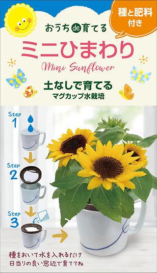 Magcup_flwer_Sunflower_dennouassist.jpg