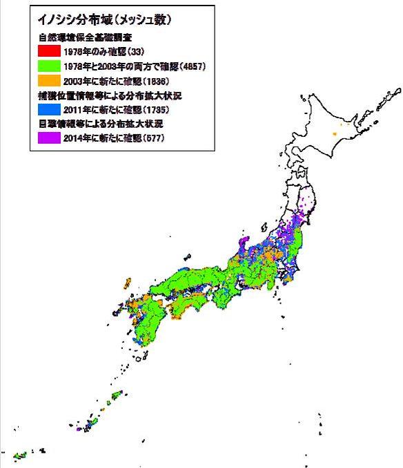 イノシシの分布状況 環境省2015.jpg