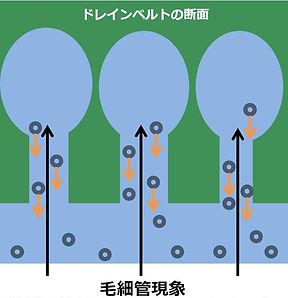 排水原理2_伝農アシスト.jpg