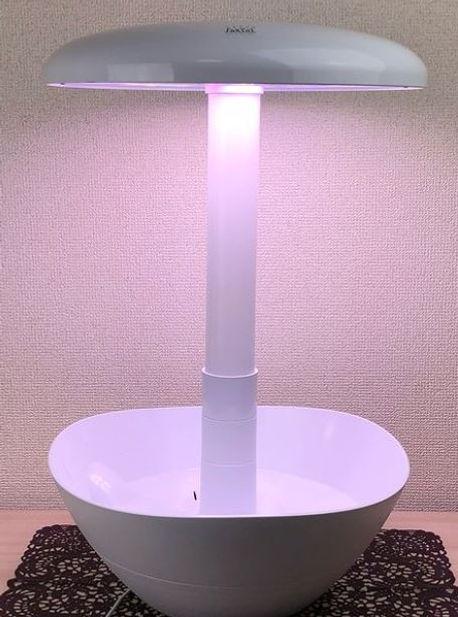 LED-POT 継ぎ足し2.JPG