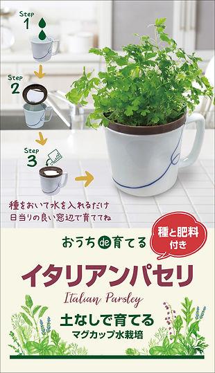 ハーブ野菜_マグカップ_イメージ1204-8.jpg