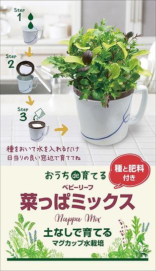 ハーブ野菜_マグカップ_イメージ1204-7.jpg