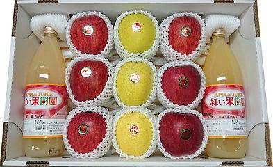 リンゴジュース(ふじ王林ジュースセット)sensyokusai・選食采 伝