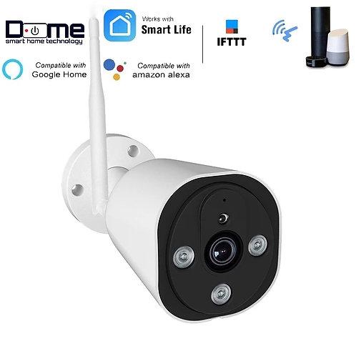 Dome Smart 1080P IP Outdoor Camera