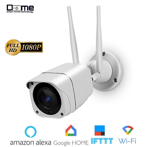 Dome Smart 1080P IP Outdoor Camera