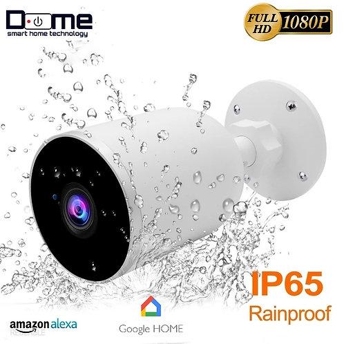 Dome 1080POutdoor  IP camera Google Assistant
