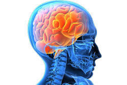 Keeping Sane when Loved Ones' Brains are Inflamed