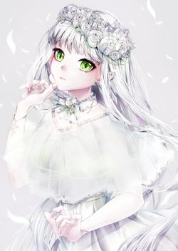 白髪の花嫁