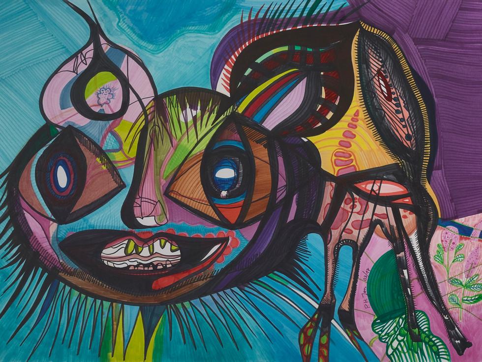 Chat sauvage • Aquarel en kleurinkt op papier