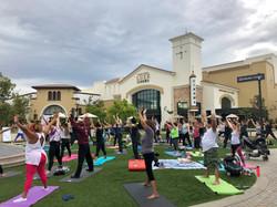 The Veranda Yoga In The Park