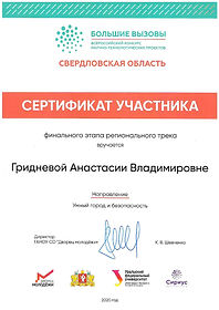 Гриднева Анастасия_page-0001.jpg