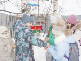 Акция «Накорми птиц зимой».  Конкурс кормушек «Столовая для птиц»
