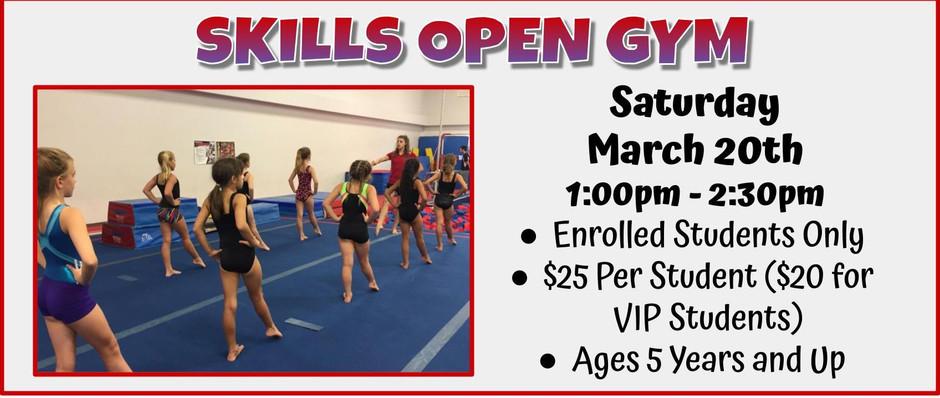 Skills Open Gym