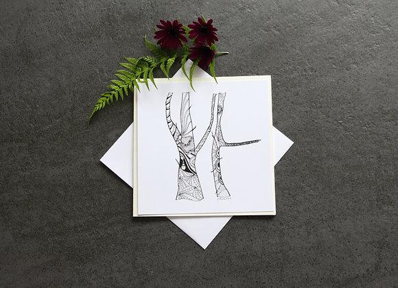 """SERIE HORTUS BALADE"" Illustration by JO ET LIBELLULES"