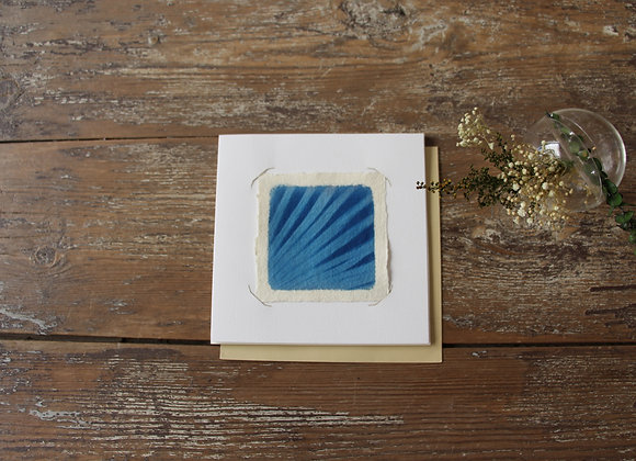 """DETAIL PALMIER CHANVRE"" Photo cyanotype by LES PAPIERS BLEUS"