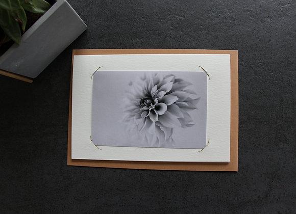 """DAHLIA 1"" Photo noir et blanc by SANDRA HYGONNENC"