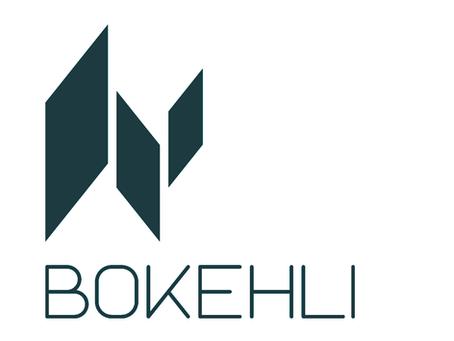 Comment BOKEHLI est né et pourquoi ce drôle de nom ?