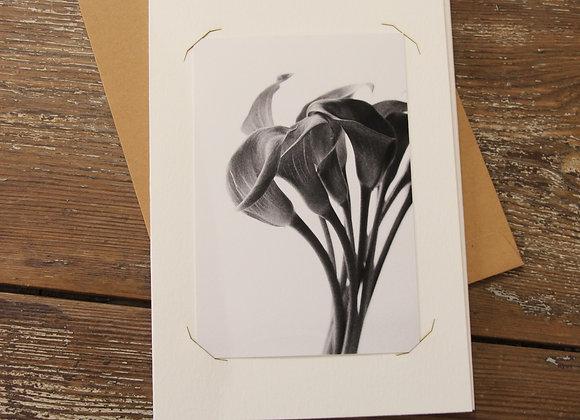 """ARUM 2 "" Photo noir et blanc by SANDRA HYGONNENC"