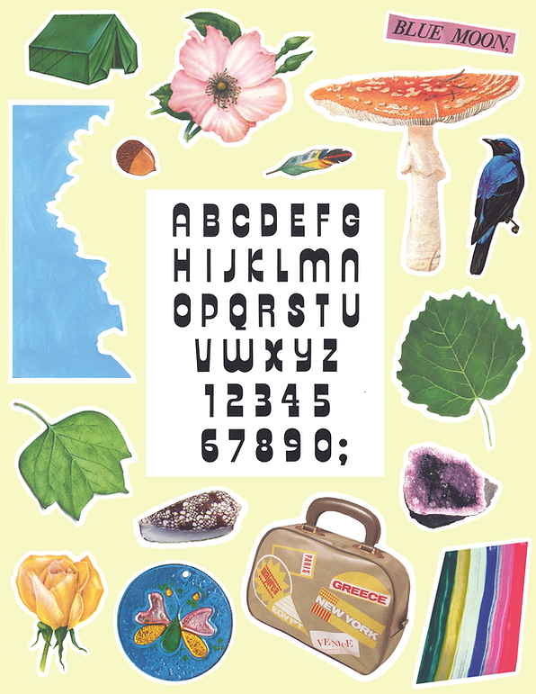 HOLLY_LEONARDSON_COLLAGE_KIT.tif