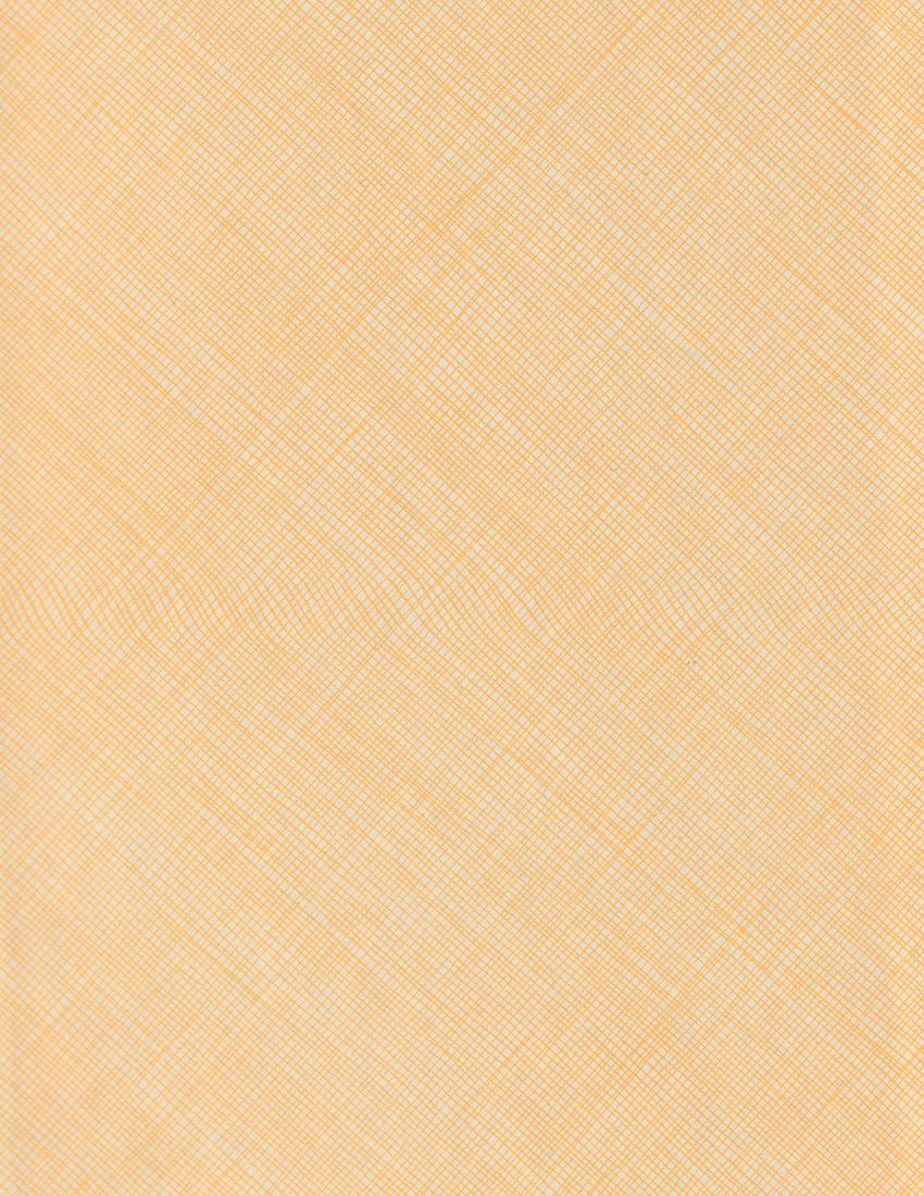 SEDONA_LEBLANC_background 2.png