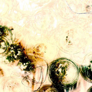 Abstract Diatoms 2