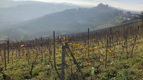 A visit to Le Langhe, Piedmont… part 1