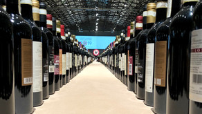 Chianti Classico Collection 2019