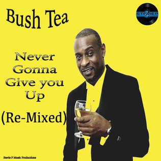 Bush-Tea.jpg