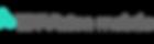 ENVision Long Logo transparent copy.png