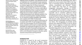 Combatting COVID-19: is ultrasound an important piece in the diagnostic puzzle?